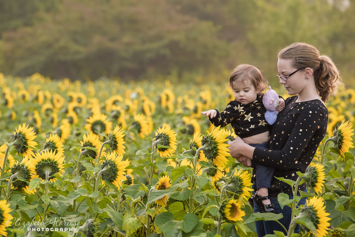 Sibling portrait Sunflower field Avon Ohio