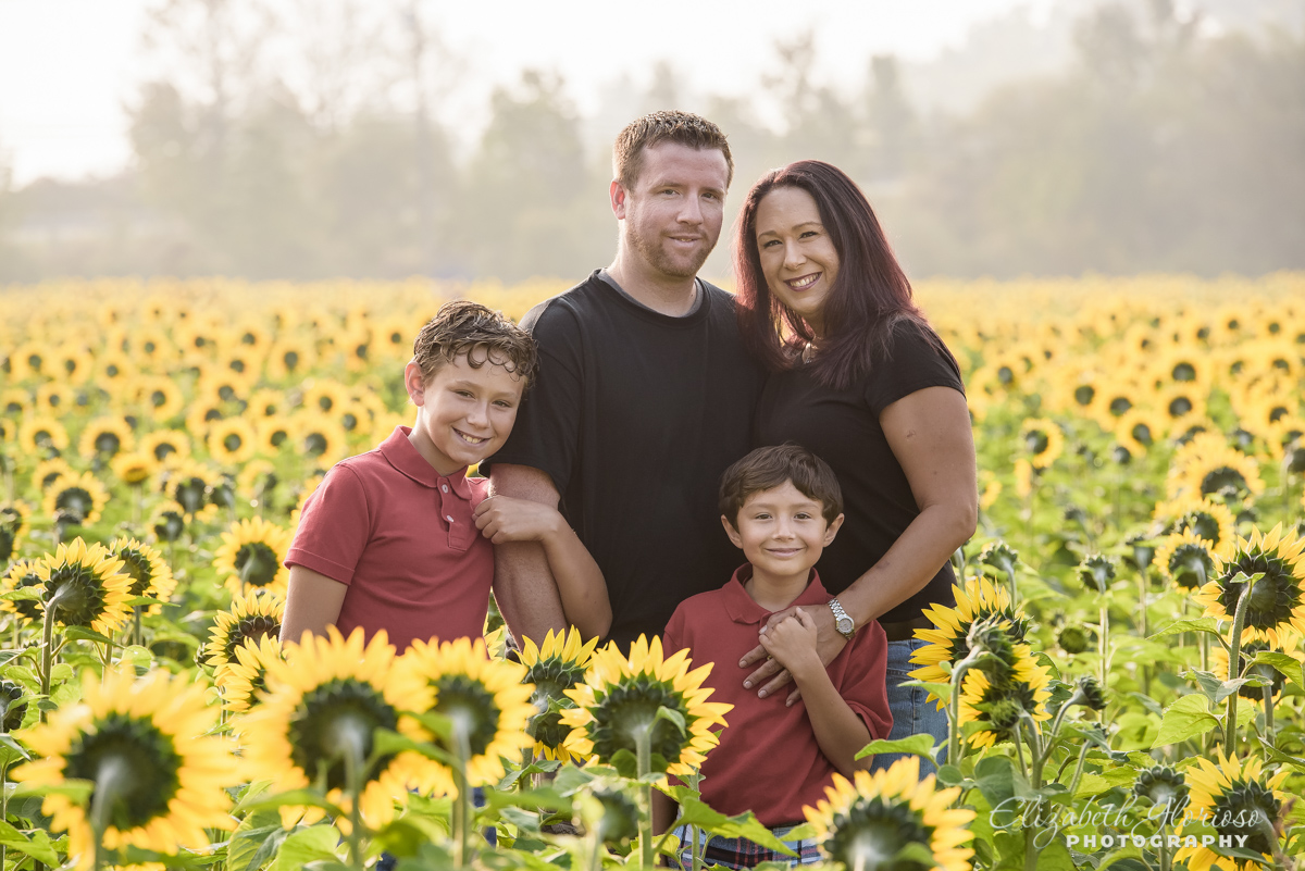 Family sunrise portrait Sunflower field Avon Ohio