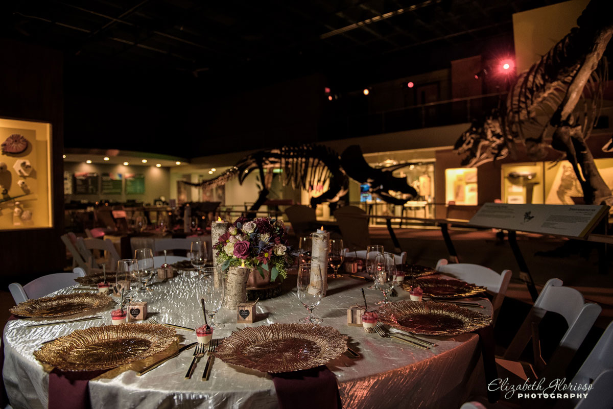 Wedding reception photos at Cleveland Natural History Museum