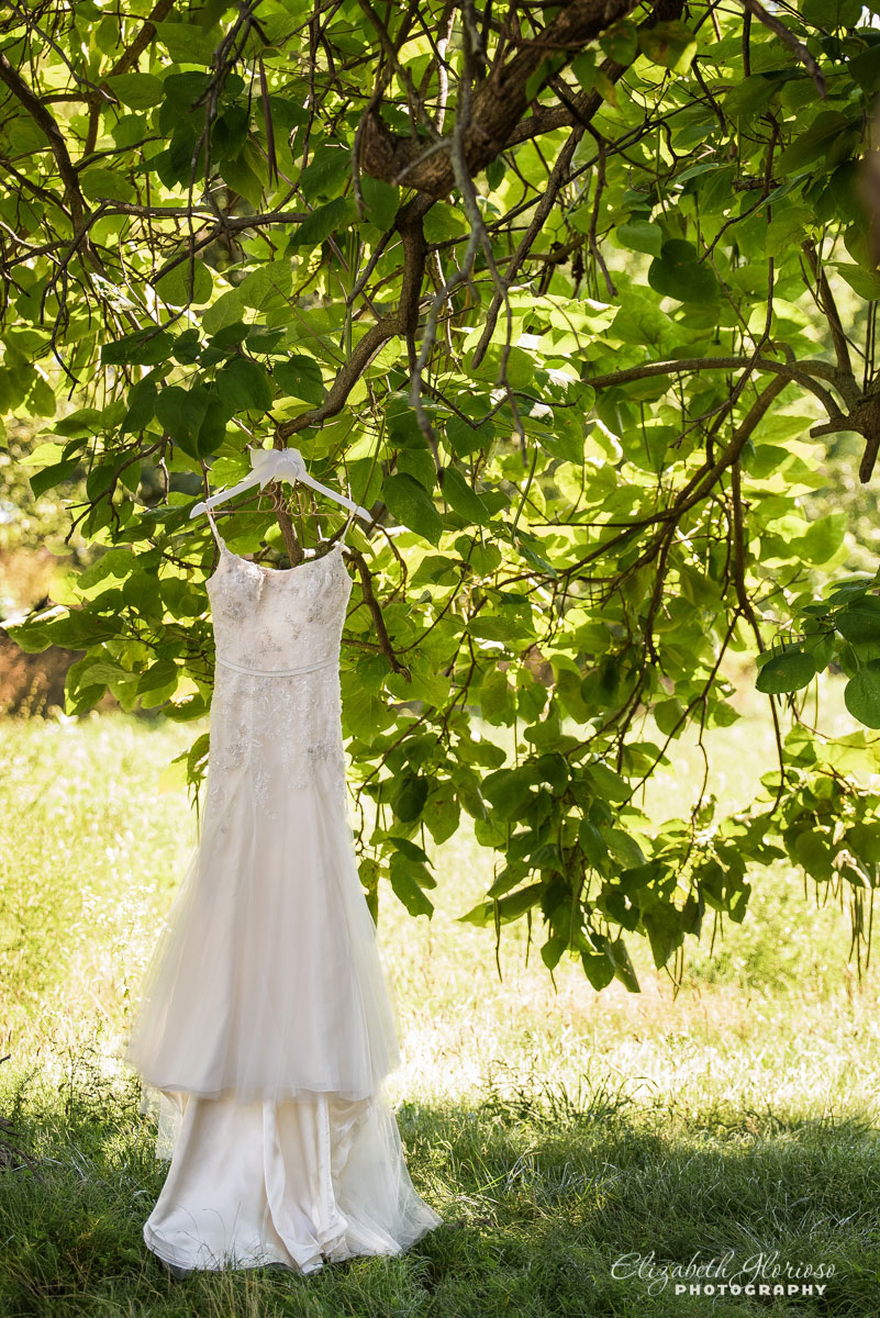 Picture of wedding dress hanging from a tree