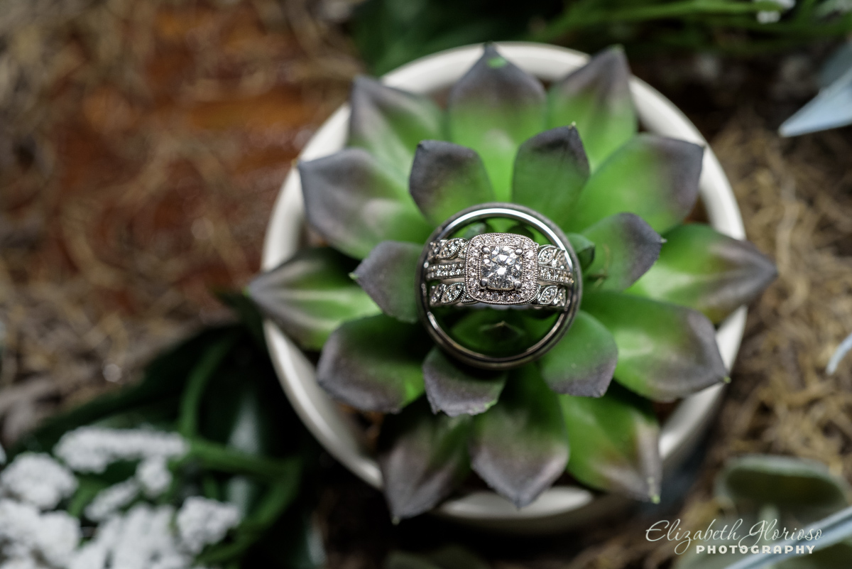 Wedding rings with Succulent Mapleside Farm barn Cleveland Ohio