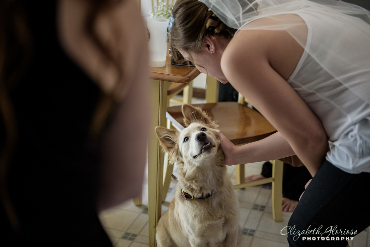 Bride with her dog